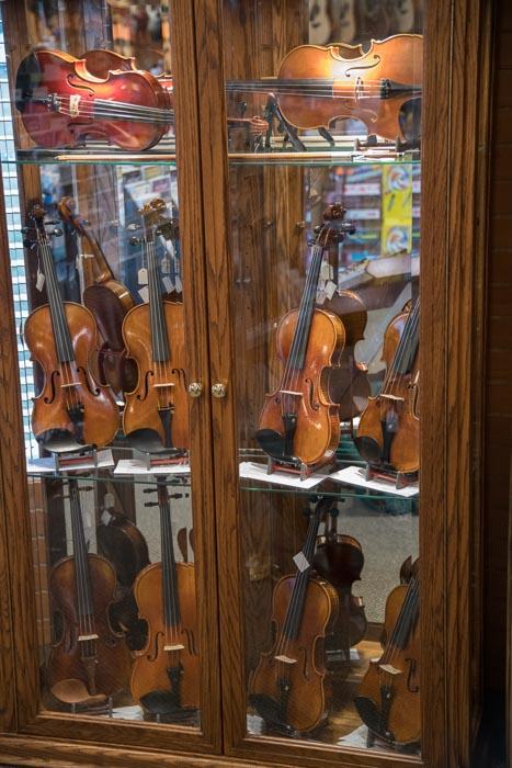 Exquisite Concert String Instruments